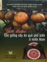 Giới thiệu các giống cây ăn quả phổ biến ở Miền Nam