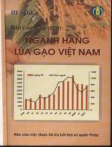 Ngành hàng lúa gạo Việt Nam : Báo cáo tổng quan