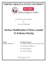Surface modification of meta-aramid to enhance dyeing / Vũ Khánh Nguyên